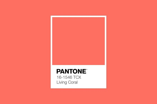 "Color of the Year 2019 ""Living Coral"""